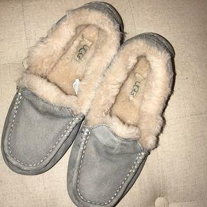 Light gray Ansley UGG slippers